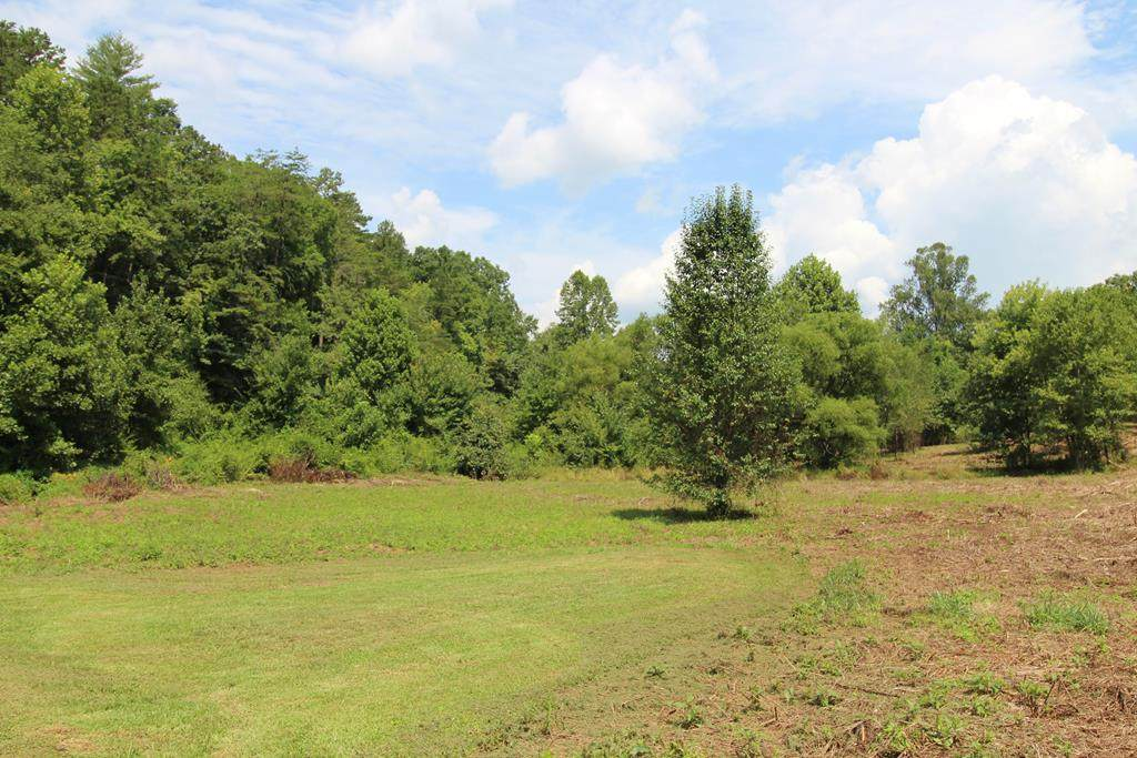 Lot 4 Peachtree Meadows Trail - Photo 1