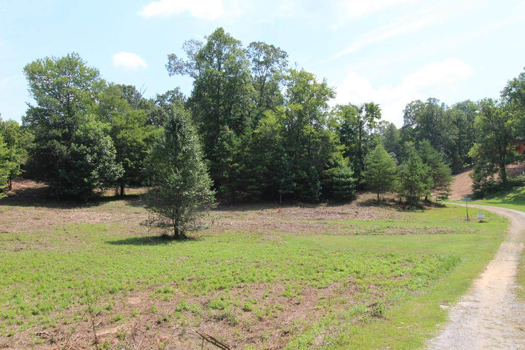 Lot 5 Peachtree Meadows Trail - Photo 1