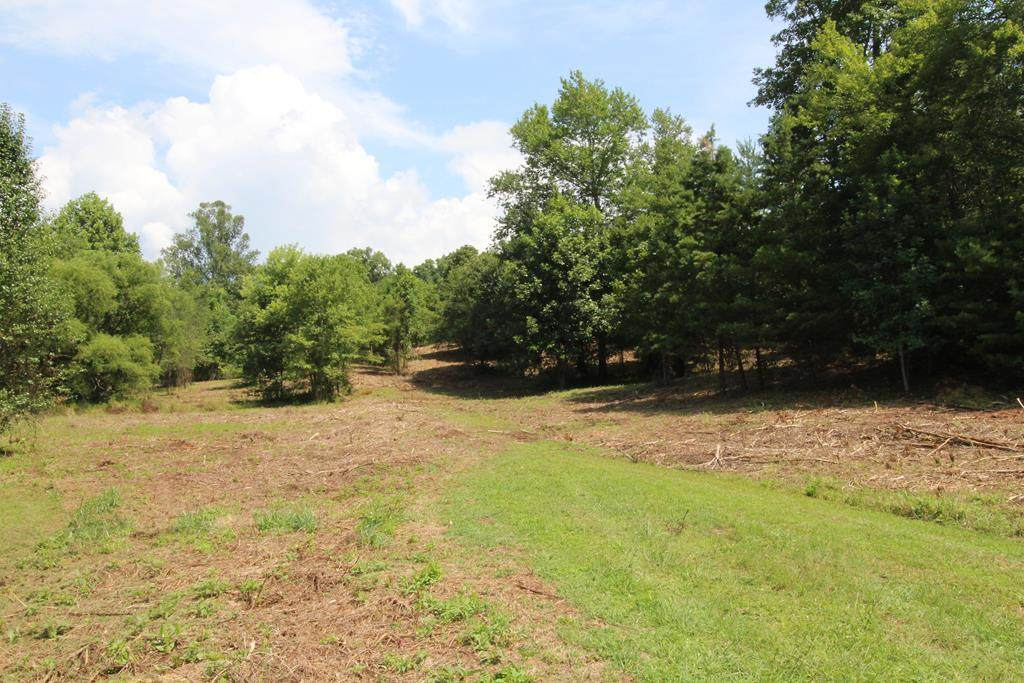 Lot 3-5 Peachtree Meadows Trail - Photo 1