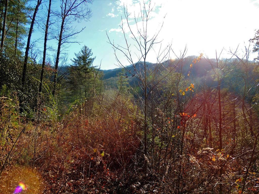 00 Deer Run Road - Photo 1
