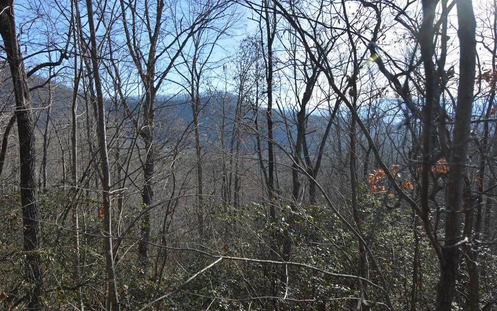 Lot 20 Enchanted Ridge - Photo 1