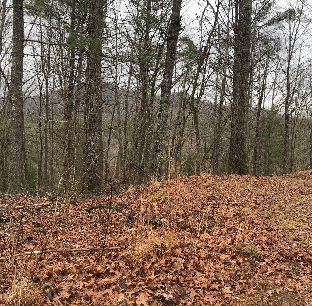 00 Dogwood Trail - Photo 1