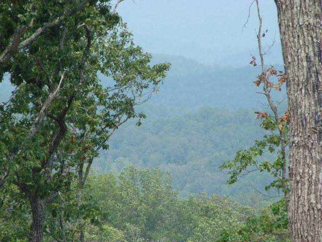 Lot 46 Hideaway Hills, MURPHY, NC 28906 (MLS #131434) :: Old Town Brokers