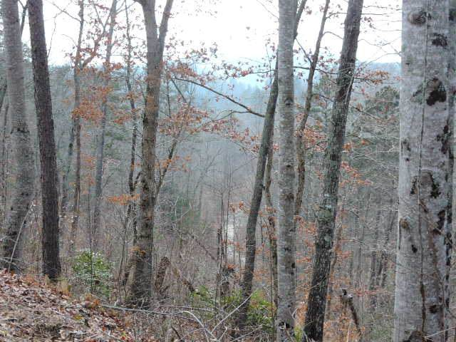 Lot 20 Hideaway Hills, MURPHY, NC 28906 (MLS #131438) :: Old Town Brokers