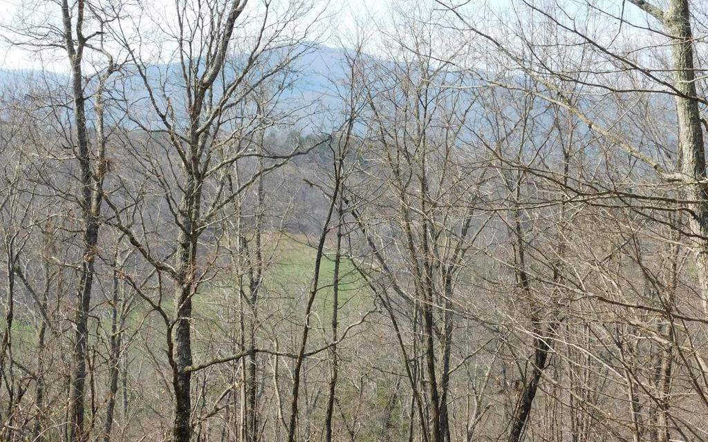 Lot 1 Deer Valley - Photo 1