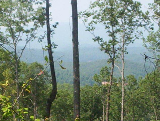 Lot 31 Hideaway Hills, MURPHY, NC 28906 (MLS #131445) :: Old Town Brokers