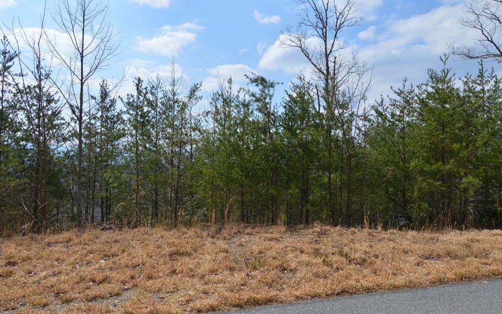 Lot 40 Deer Valley - Photo 1