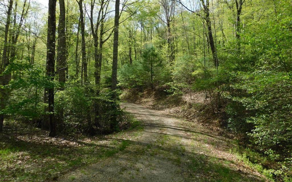 0 Hidden Springs Drive - Photo 1