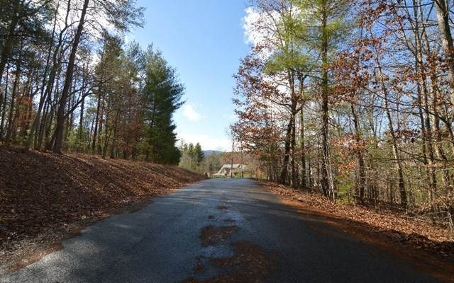 Lot 26 Coosa Bend - Photo 1