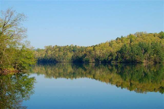 45 Mountain Lake Drive, MURPHY, NC 28906 (MLS #131827) :: Old Town Brokers