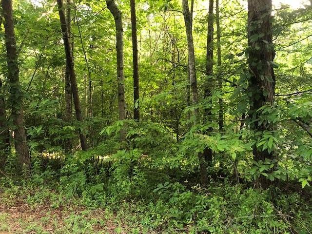 Lot 2 Parr Place, MURPHY, NC 28906 (MLS #131899) :: Old Town Brokers