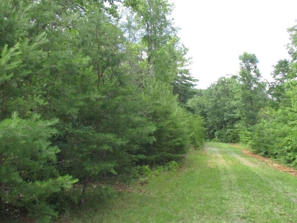 Lot 32 Wilderness Creek Falls - Photo 1
