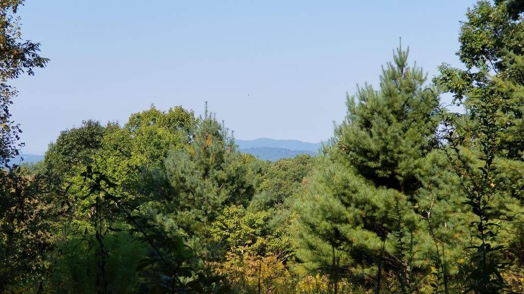Lot 38-B Holly Berry Dr - Photo 1