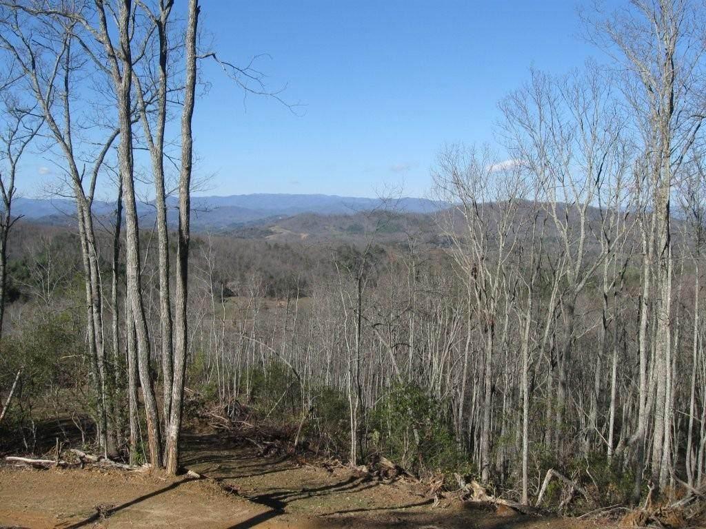 900 Sequoyah Trail - Photo 1