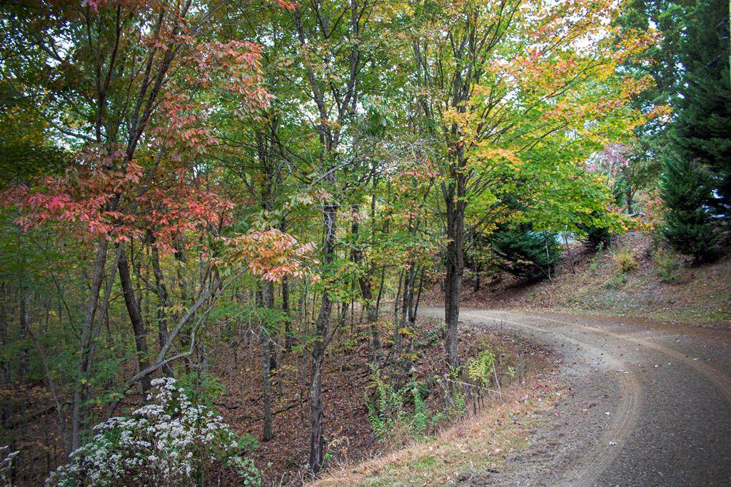 Lot 32 B Forest Edge View - Photo 1