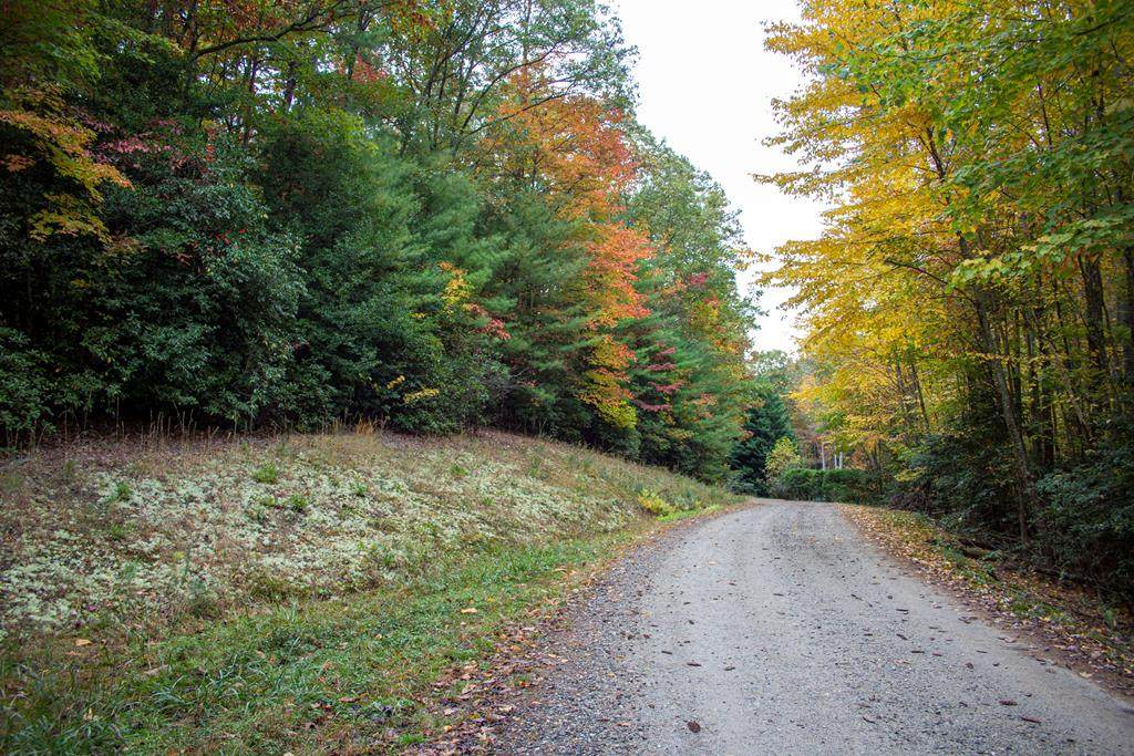 Lot 34B Forest Edge View - Photo 1