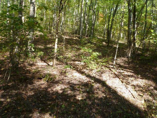 000 Tranquil Cove Road, MURPHY, NC 28906 (MLS #133182) :: Old Town Brokers