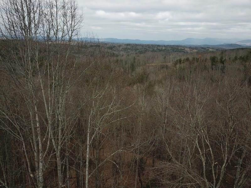 #13 My Mountain - Photo 1