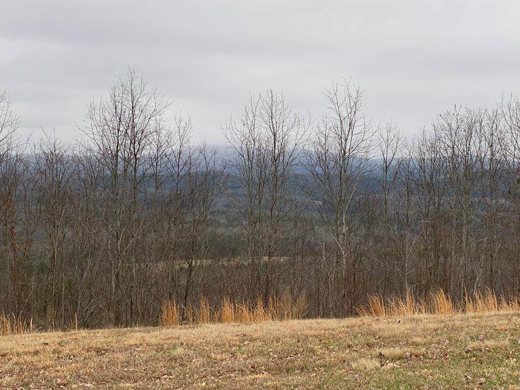 Lot 35 Great Sky Trail - Photo 1