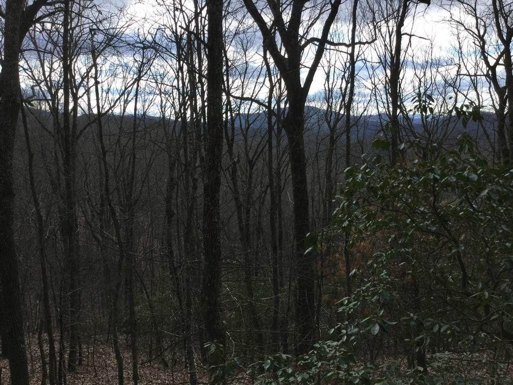 502 AC Candy Mountain Road - Photo 1