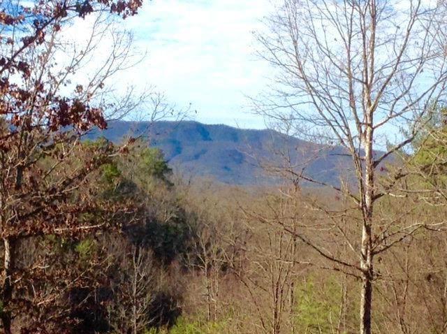 Lots 4&5 Whiskey Mountain - Photo 1