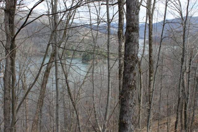 LOT 35 Nantahala Shores, NANTAHALA, NC 28781 (MLS #134093) :: Old Town Brokers