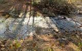 Lot 44 Fires Creek Cove - Photo 2