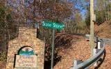 Lot 44 Fires Creek Cove - Photo 9