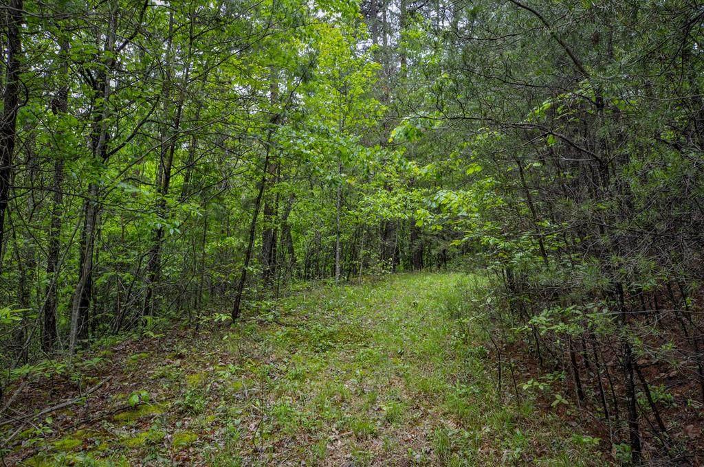 Lot 40 Fox Run Drive - Photo 1