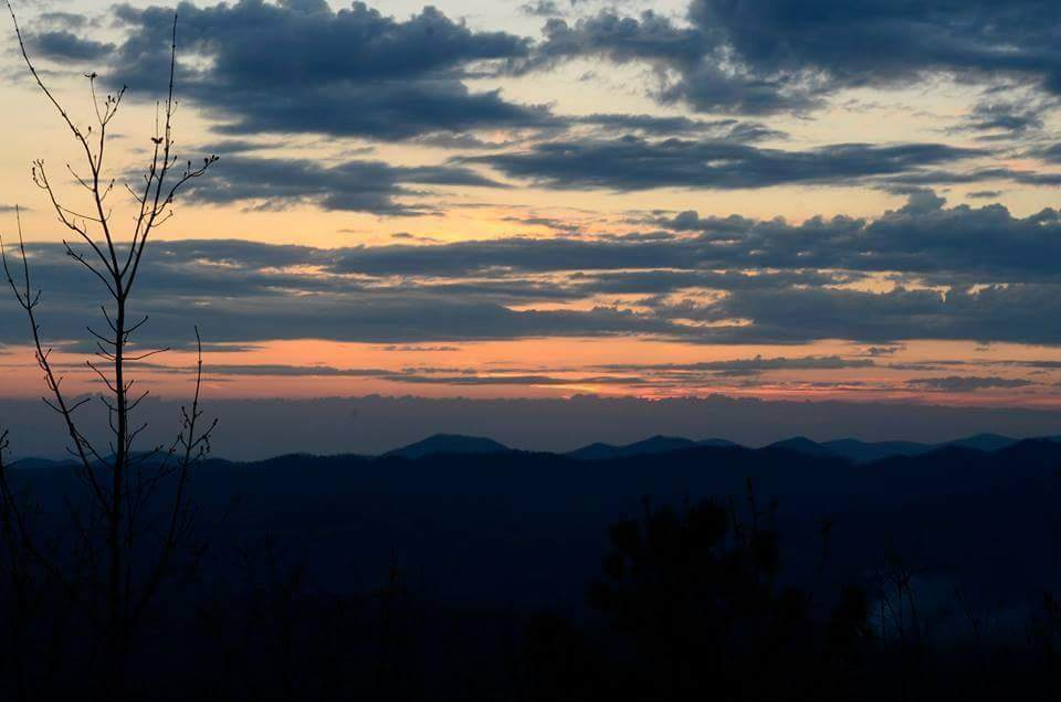 116 Mountain Ivy Lane - Photo 1