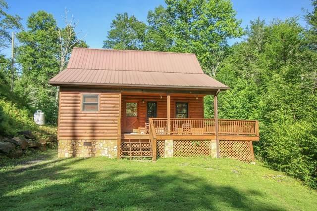 60 Porterfield Gap Rd, ROBBINSVILLE, NC 28771 (MLS #134688) :: Old Town Brokers