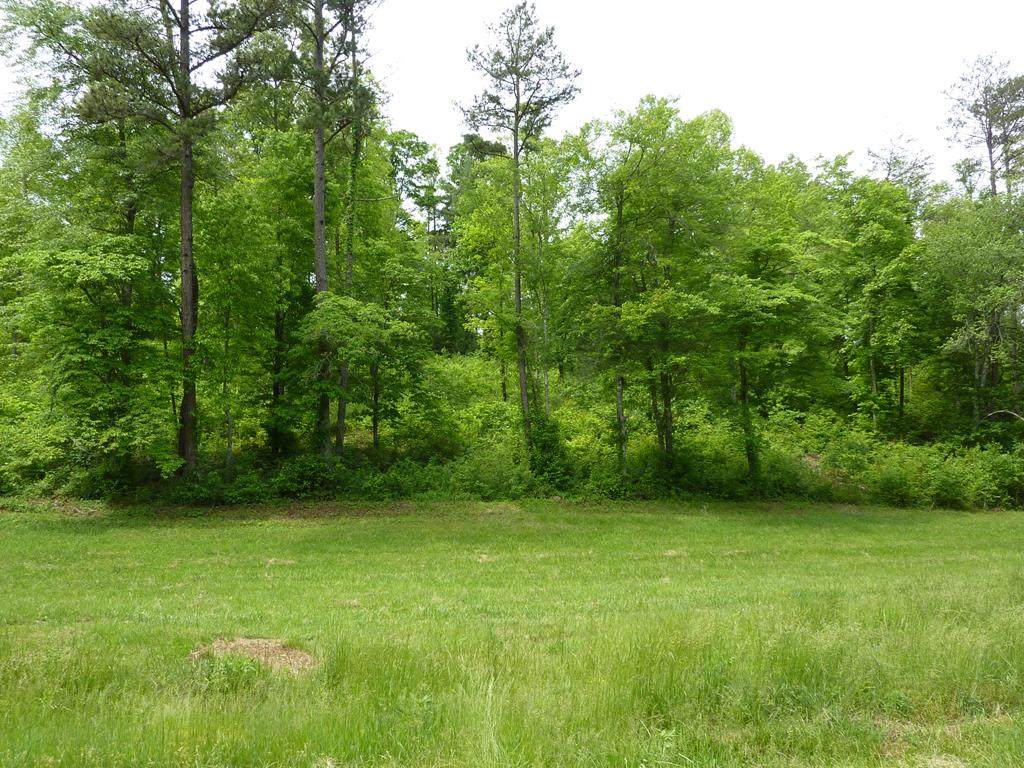 5 Turkey Creek Acres - Photo 1