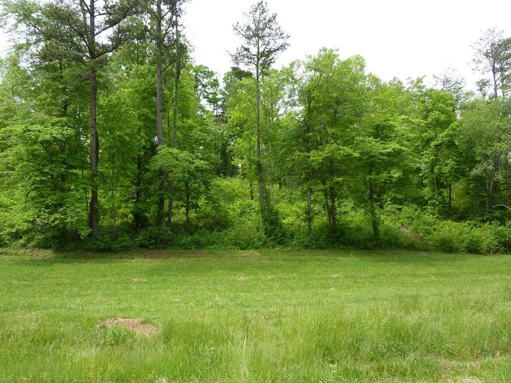 7 Turkey Creek Acres - Photo 1