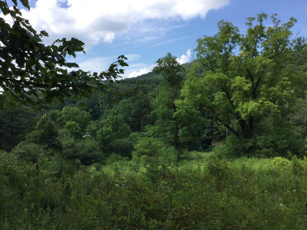 122AC Candy Mountain Road - Photo 1