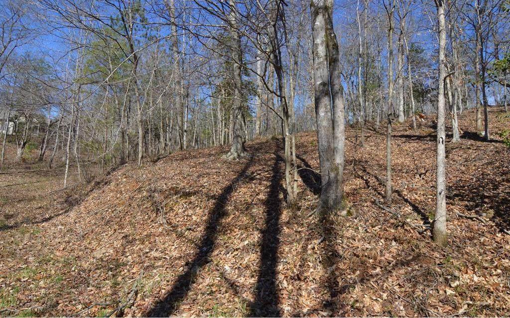 Lot 35 Bell Creek Estates - Photo 1