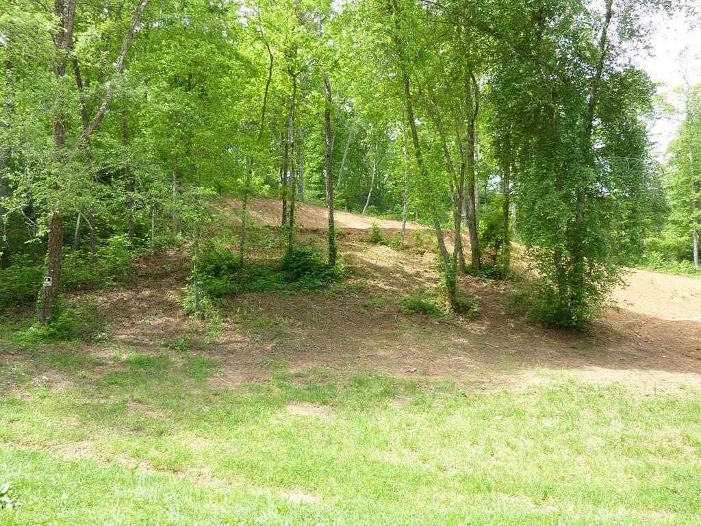 1 Turkey Creek Acres - Photo 1