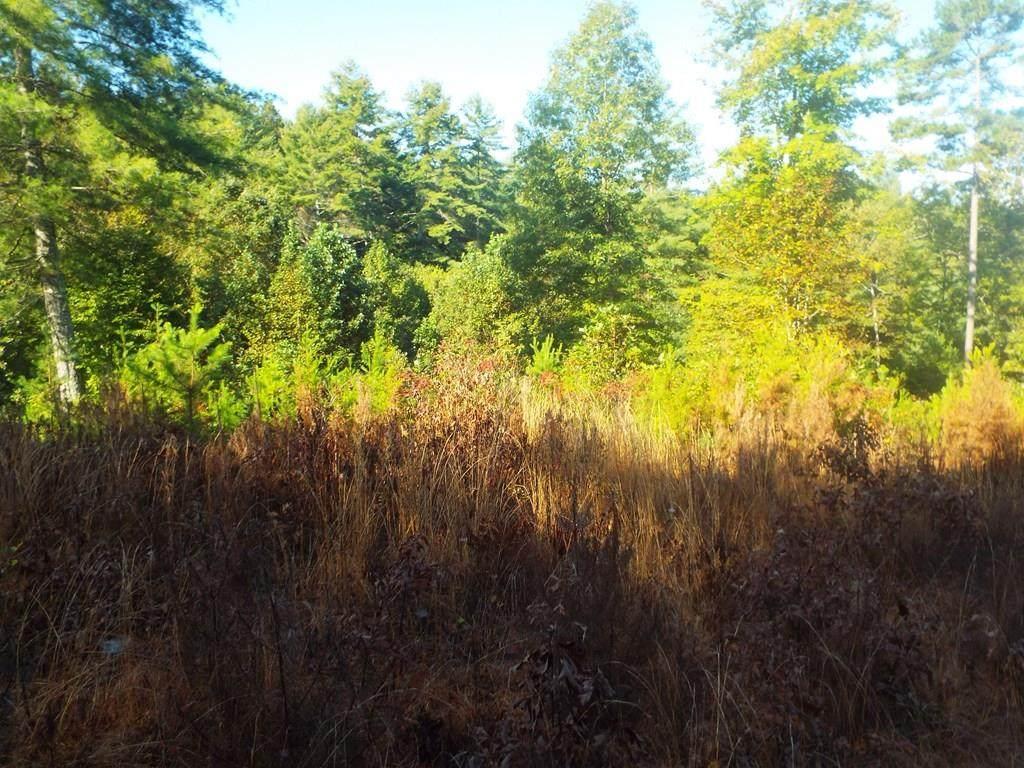 272 Maple Ridge Ln - Photo 1