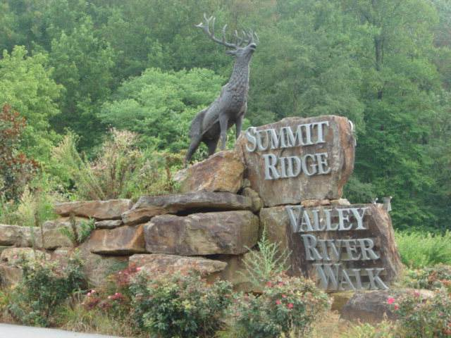 Lot 14 Smokey Mtn Ridge - Photo 1