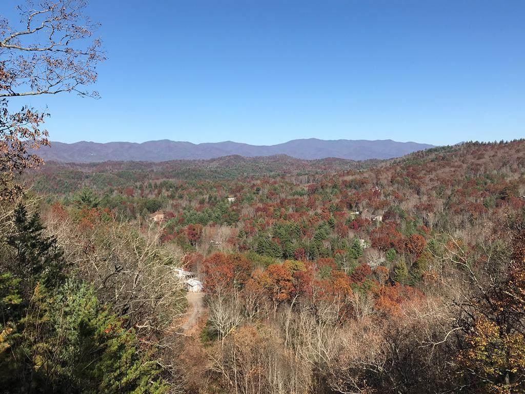 2.61 Mountain Ivy Lane - Photo 1