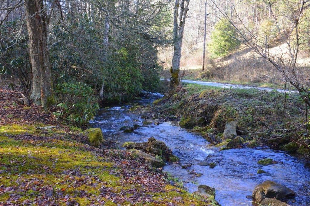 568 Left Fork Beech Creek Rd - Photo 1