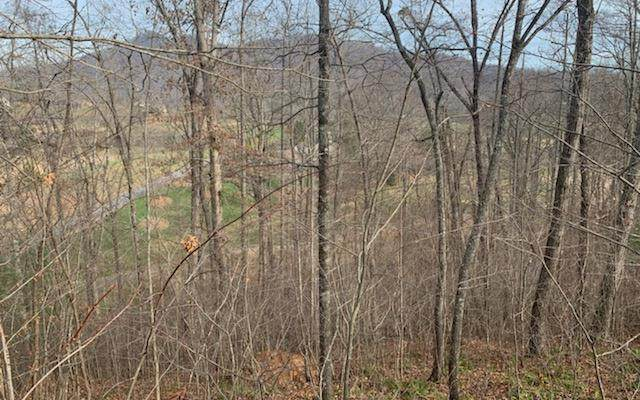 Lot 83A Mtn Harbour, HAYESVILLE, NC 28904 (MLS #136764) :: Old Town Brokers