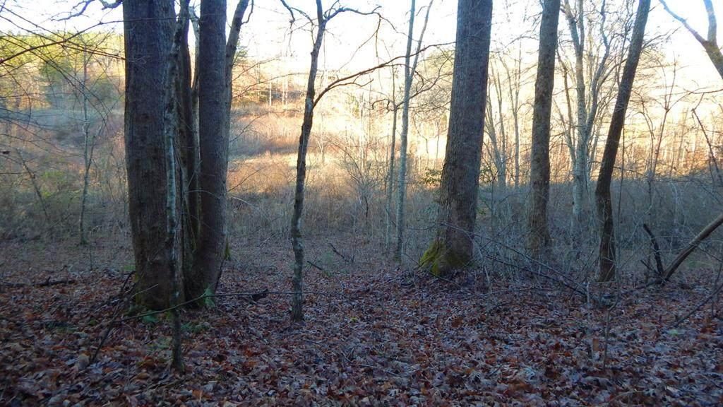 1681 Camp Creek Rd. - Photo 1