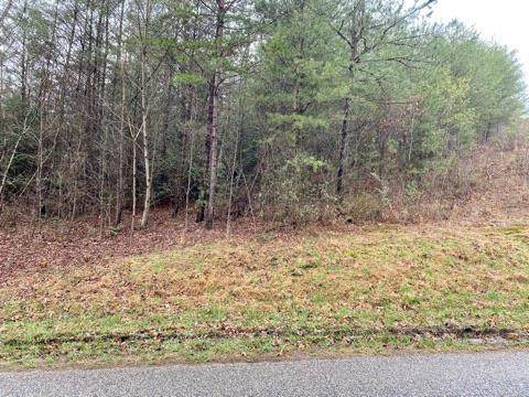 000 Stalcup Ln, MARBLE, NC 28905 (MLS #137386) :: Old Town Brokers