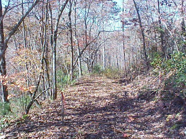 Lot 6-2 Mcintosh Lane, MURPHY, NC 28906 (MLS #137620) :: Old Town Brokers