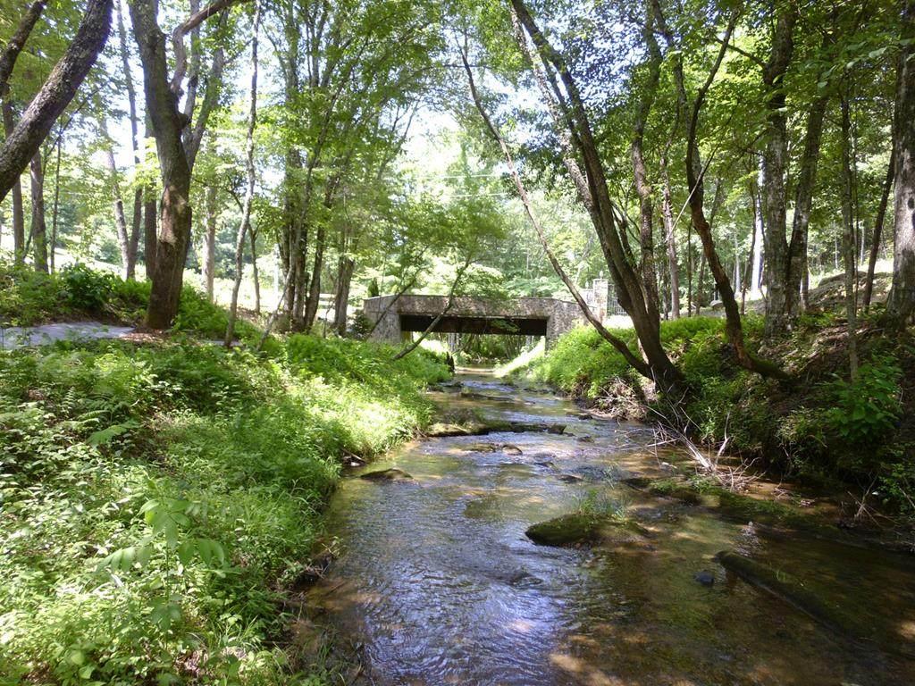 00 Wolf Creek Rd - Photo 1