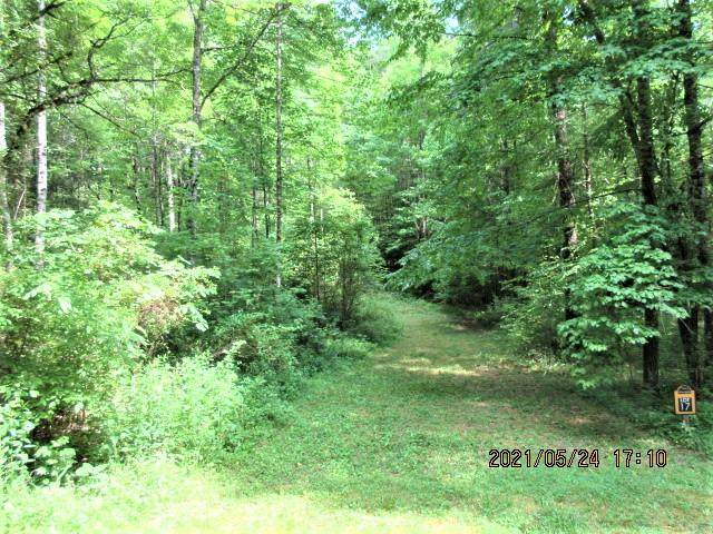000 Owl Creek And Panther Springs, MURPHY, NC 28906 (MLS #138084) :: Old Town Brokers