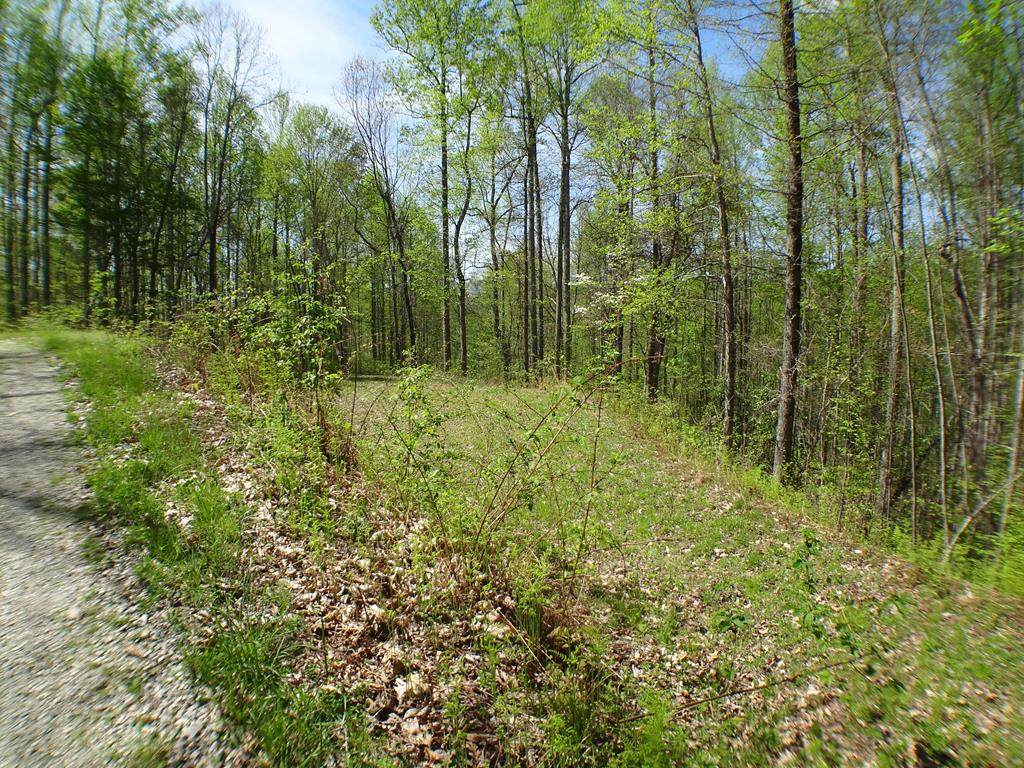 Lot 6&7 Deweese Rd - Photo 1