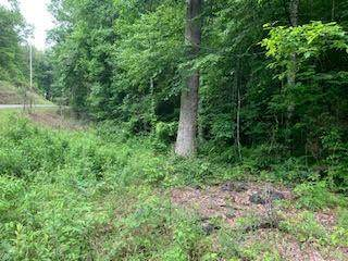 00 Daylily Drive, MARBLE, NC 28906 (MLS #138159) :: Old Town Brokers