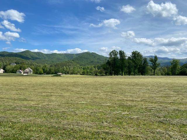 HAYESVILLE, NC 28904 :: Old Town Brokers