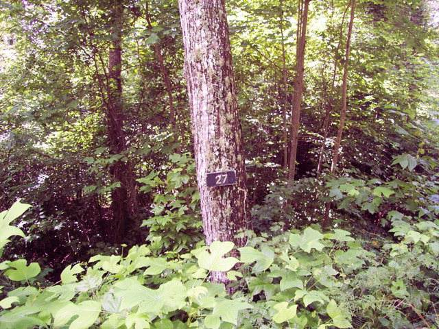 Lot #27 Thundering Hill, MURPHY, NC 28906 (MLS #138254) :: Old Town Brokers
